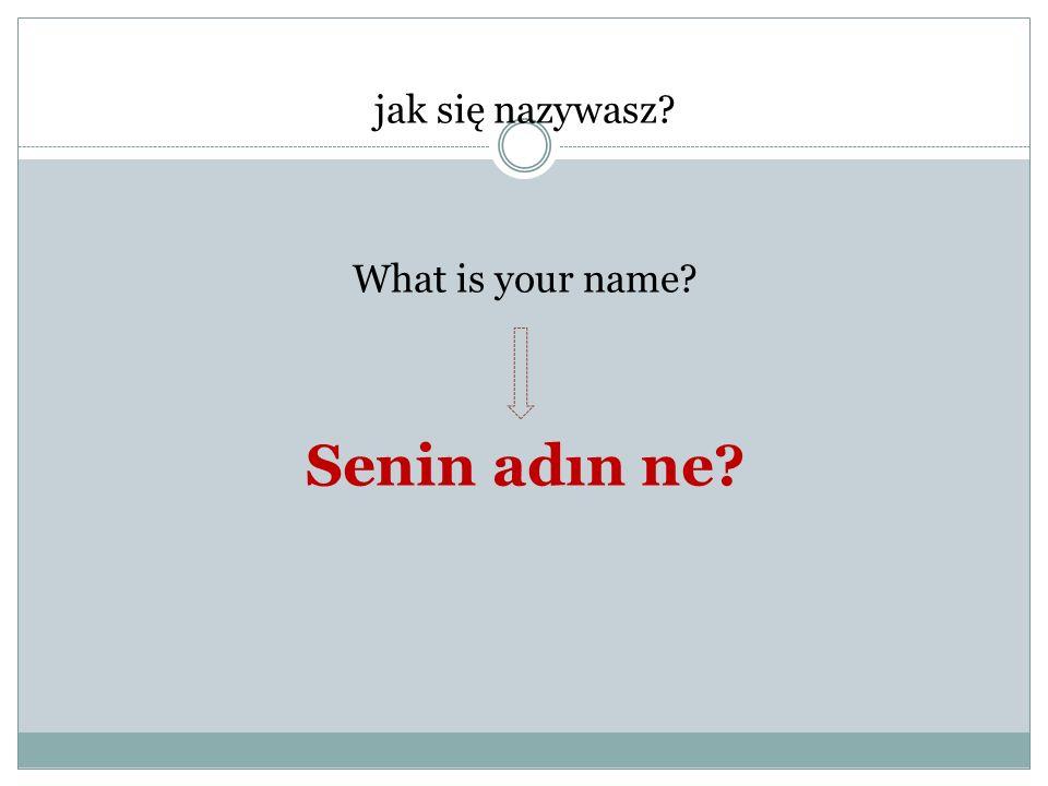 jak się nazywasz? What is your name? Senin adın ne?