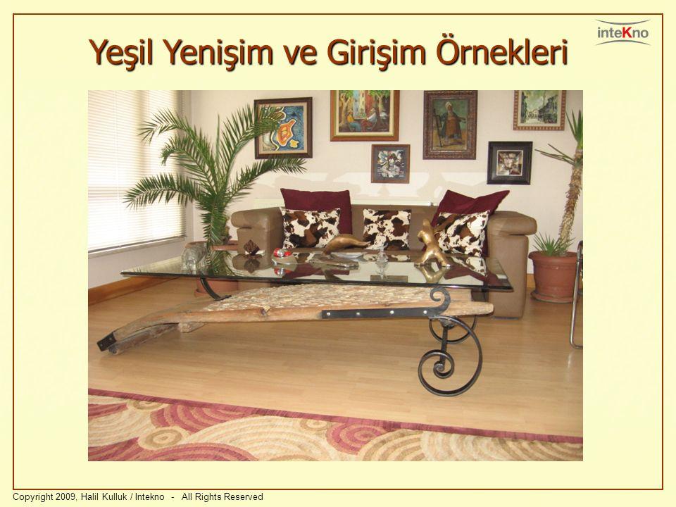 Yeşil Yenişim ve Girişim Örnekleri Copyright 2009, Halil Kulluk / Intekno - All Rights Reserved