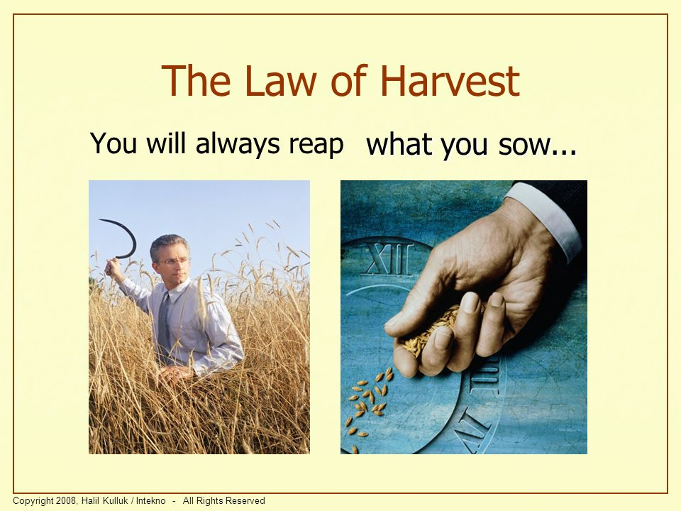 The Law of Harvest You will always reap what you sow...