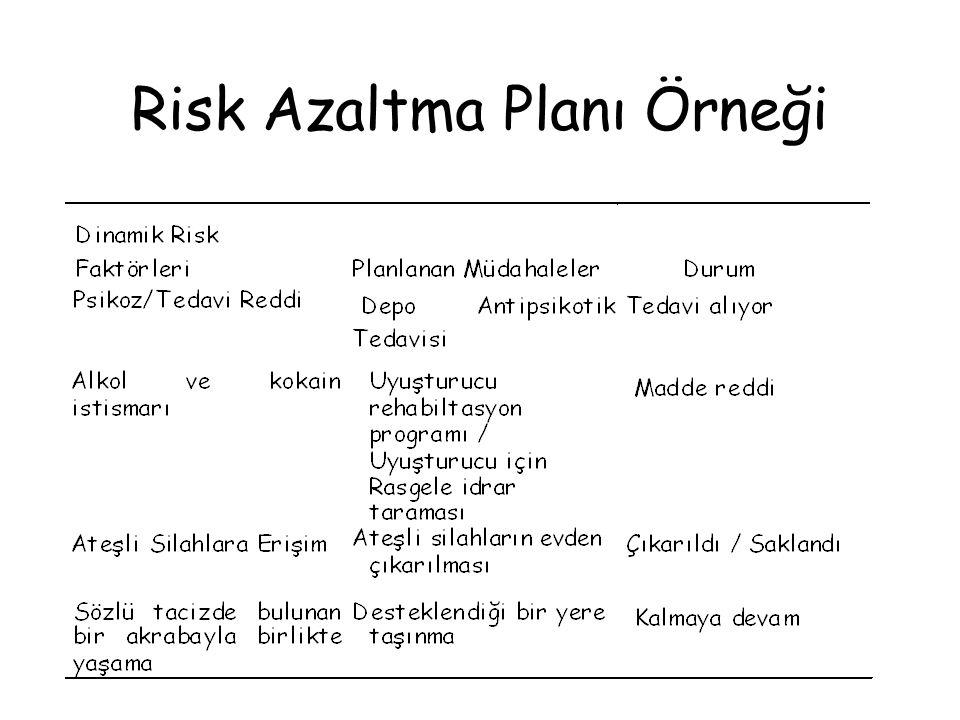 Risk Azaltma Planı Örneği