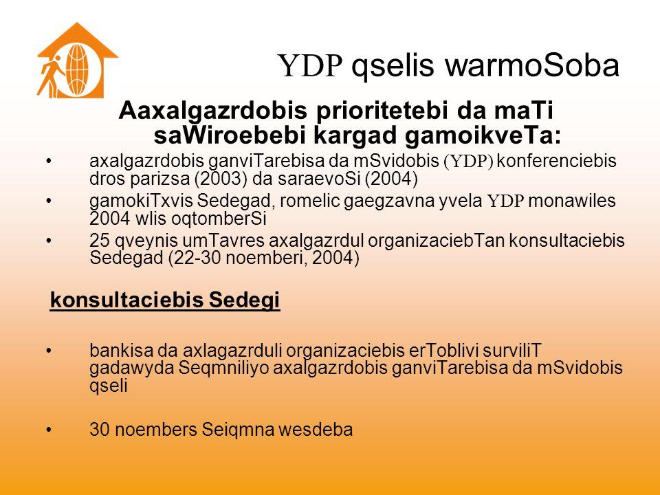 YDP qselis warmoSoba Aaxalgazrdobis prioritetebi da maTi saWiroebebi kargad gamoikveTa: axalgazrdobis ganviTarebisa da mSvidobis (YDP) konferenciebis dros parizsa (2003) da saraevoSi (2004) gamokiTxvis Sedegad, romelic gaegzavna yvela YDP monawiles 2004 wlis oqtomberSi 25 qveynis umTavres axalgazrdul organizaciebTan konsultaciebis Sedegad (22-30 noemberi, 2004) konsultaciebis Sedegi bankisa da axlagazrduli organizaciebis erToblivi surviliT gadawyda Seqmniliyo axalgazrdobis ganviTarebisa da mSvidobis qseli 30 noembers Seiqmna wesdeba