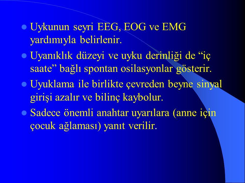 Uykunun seyri EEG, EOG ve EMG yardımıyla belirlenir. Uyanıklık düzeyi ve uyku derinliği de iç saate bağlı spontan osilasyonlar gösterir. Uyuklama ile