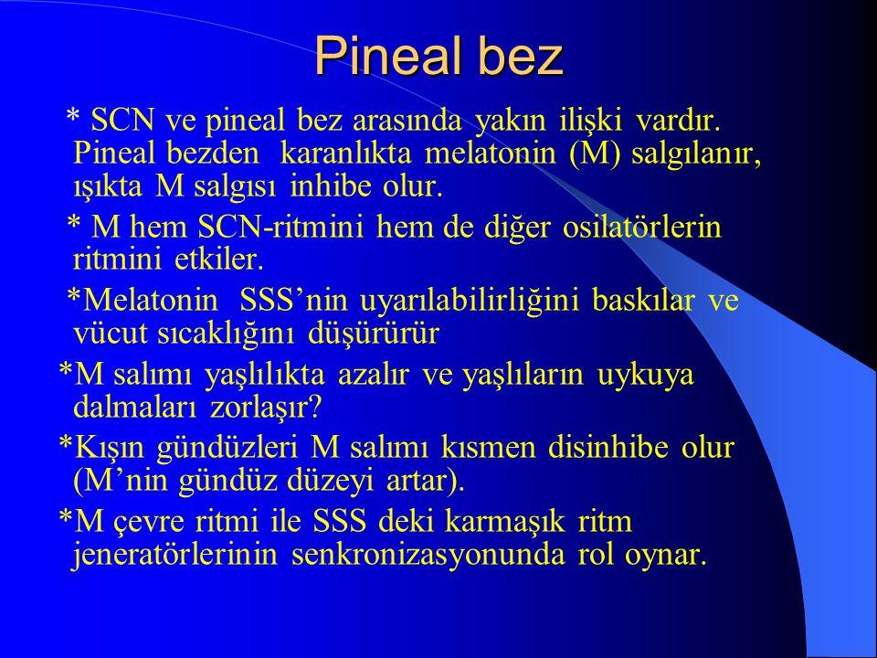 Pineal bez * SCN ve pineal bez arasında yakın ilişki vardır. Pineal bezden karanlıkta melatonin (M) salgılanır, ışıkta M salgısı inhibe olur. * M hem