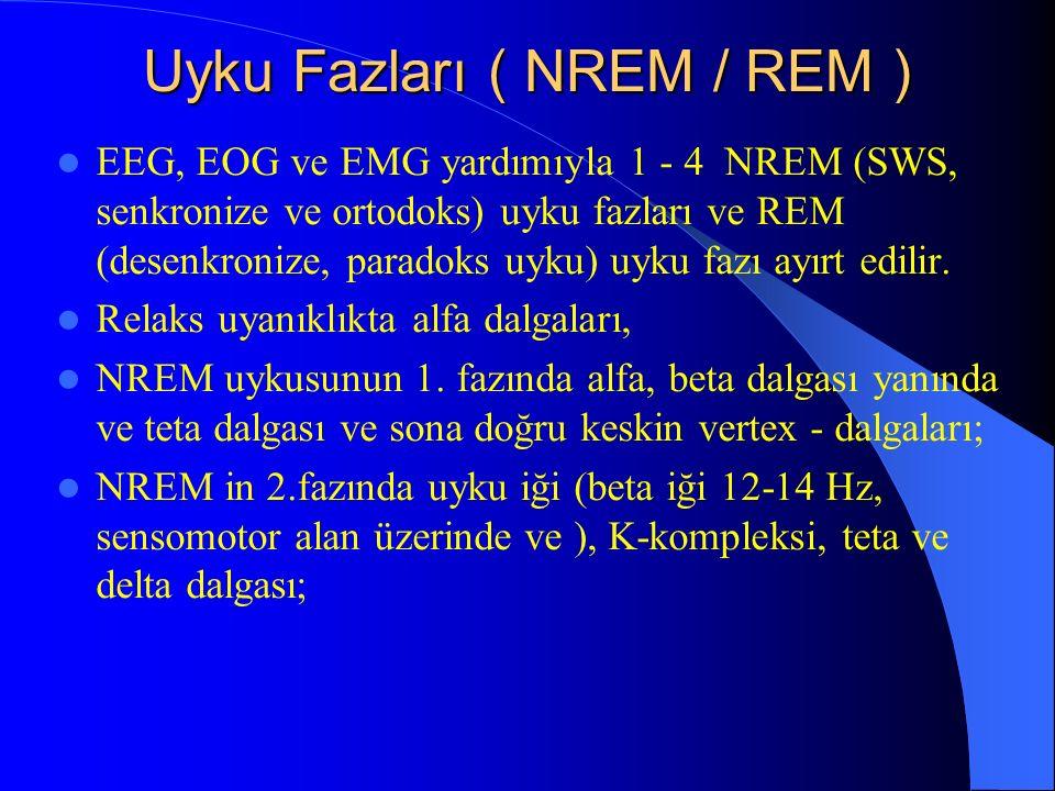 Uyku Fazları ( NREM / REM ) EEG, EOG ve EMG yardımıyla 1 - 4 NREM (SWS, senkronize ve ortodoks) uyku fazları ve REM (desenkronize, paradoks uyku) uyku