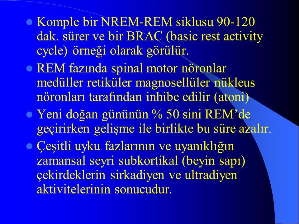 Komple bir NREM-REM siklusu 90-120 dak. sürer ve bir BRAC (basic rest activity cycle) örneği olarak görülür. REM fazında spinal motor nöronlar medülle