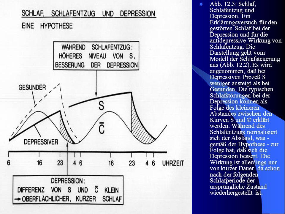 Abb. 12.3: Schlaf, Schlafentzug und Depression. Ein Erklärungsversuch für den gestörten Schlaf bei der Depression und für die antidepressive Wirkung v