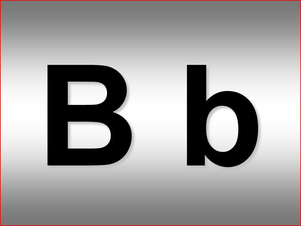 2 B b