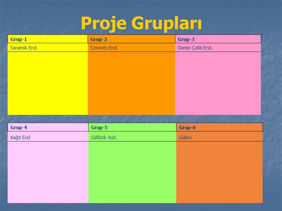 Proje Grupları Grup-1Grup-2Grup-3 Seramik End.Çimento End.Demir-Çelik End. Grup-4Grup-5Grup-6 Kağıt EndSülfürik AsitGübre
