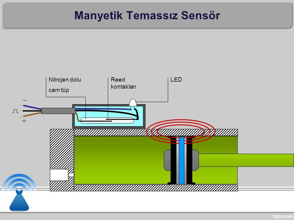 Nitrojen dolu cam tüp Reed kontakları LED Manyetik Temassız Sensör