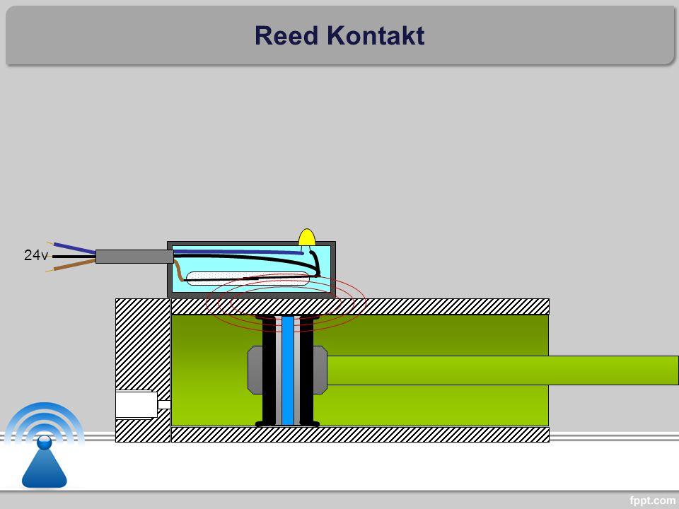 24v Reed Kontakt