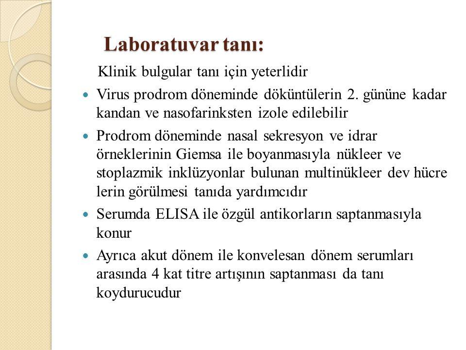 Laboratuvar tanı: Laboratuvar tanı: Klinik bulgular tanı için yeterlidir Virus prodrom döneminde döküntülerin 2.