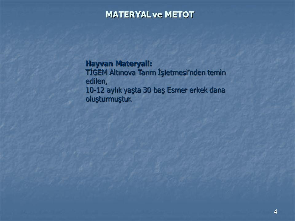 4 MATERYAL ve METOT Hayvan Materyali: TİGEM Altınova Tarım İşletmesi'nden temin edilen, 10-12 aylık yaşta 30 baş Esmer erkek dana oluşturmuştur.