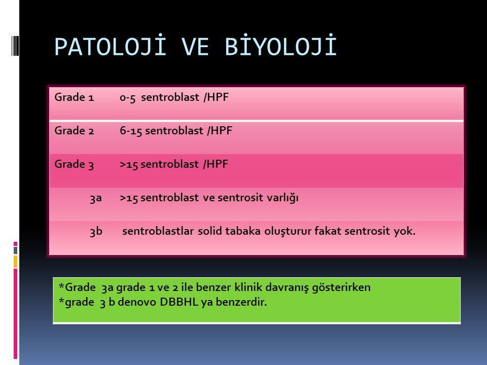 PATOLOJİ VE BİYOLOJİ Grade 10-5 sentroblast /HPF Grade 26-15 sentroblast /HPF Grade 3>15 sentroblast /HPF 3a>15 sentroblast ve sentrosit varlığı 3b se