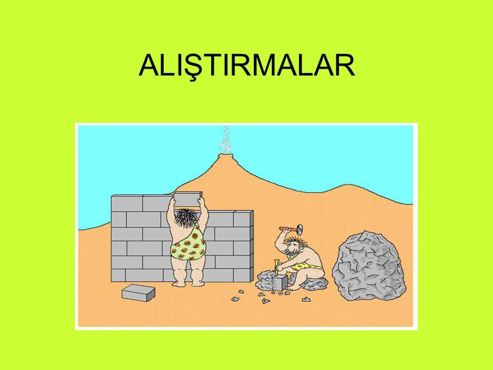 ALIŞTIRMALAR