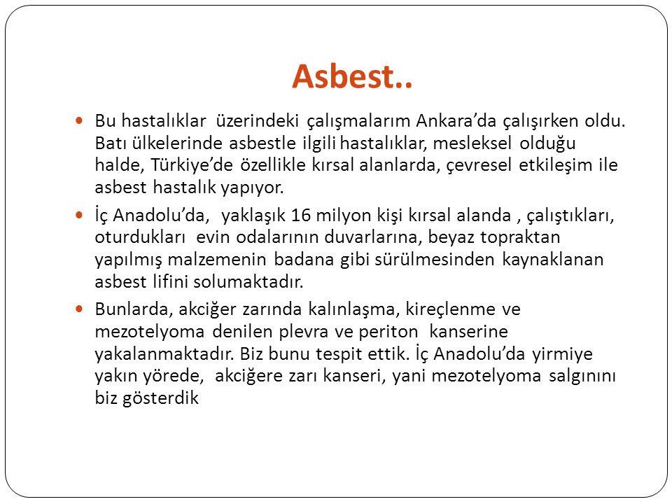 Asbest.. Bu hastalıklar üzerindeki çalışmalarım Ankara'da çalışırken oldu. Batı ülkelerinde asbestle ilgili hastalıklar, mesleksel olduğu halde, Türki