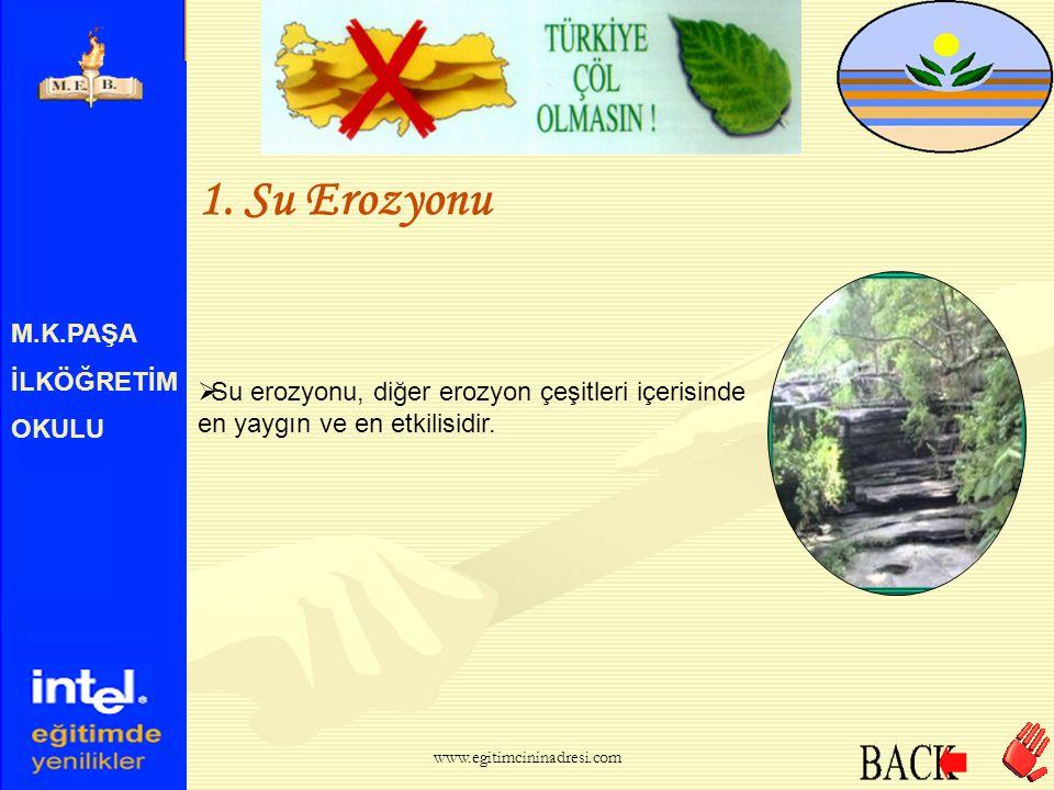 M.K.PAŞA İLKÖĞRETİM OKULU Erozyon, nedenlerine göre şöyle sınıflandırılır  5. Buzul Erozyonu www.egitimcininadresi.com