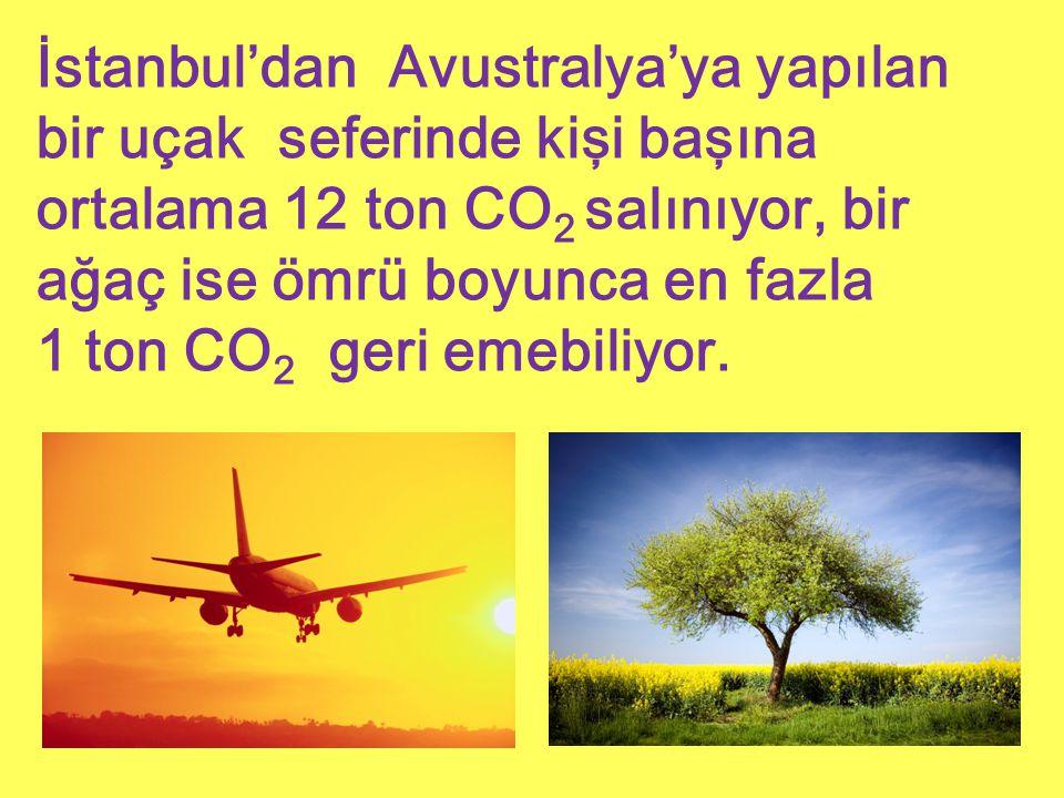 İstanbul'dan Avustralya'ya yapılan bir uçak seferinde kişi başına ortalama 12 ton CO 2 salınıyor, bir ağaç ise ömrü boyunca en fazla 1 ton CO 2 geri e