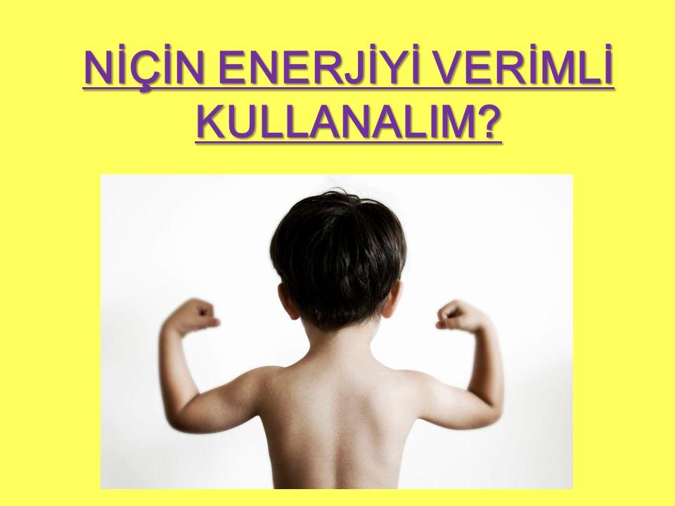 NİÇİN ENERJİYİ VERİMLİ KULLANALIM?