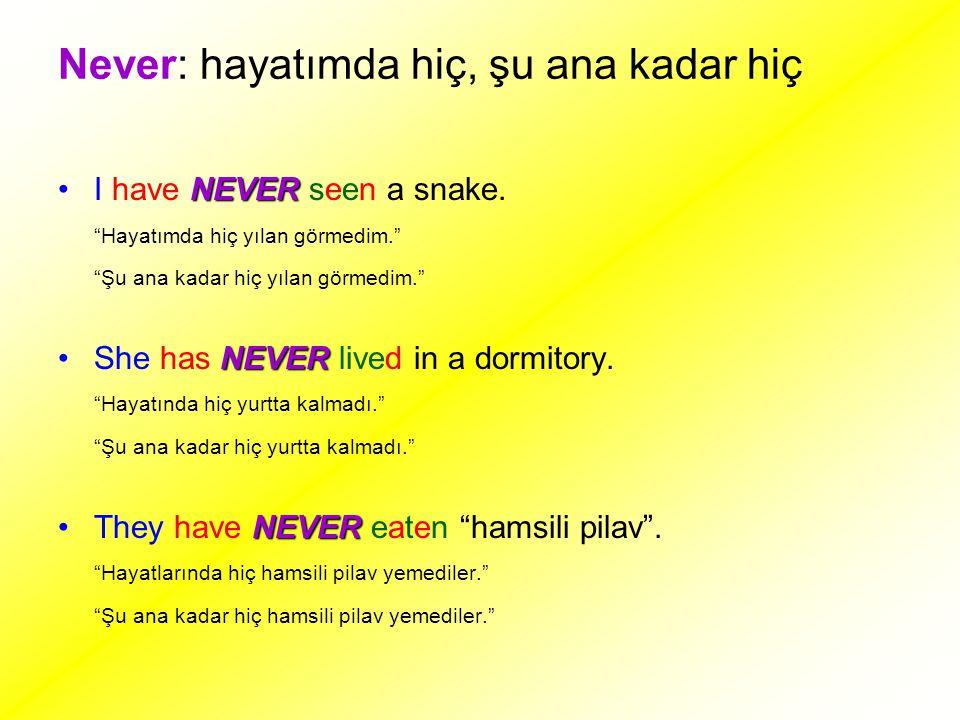 """Never: hayatımda hiç, şu ana kadar hiç NEVERI have NEVER seen a snake. """"Hayatımda hiç yılan görmedim."""" """"Şu ana kadar hiç yılan görmedim."""" NEVERShe has"""