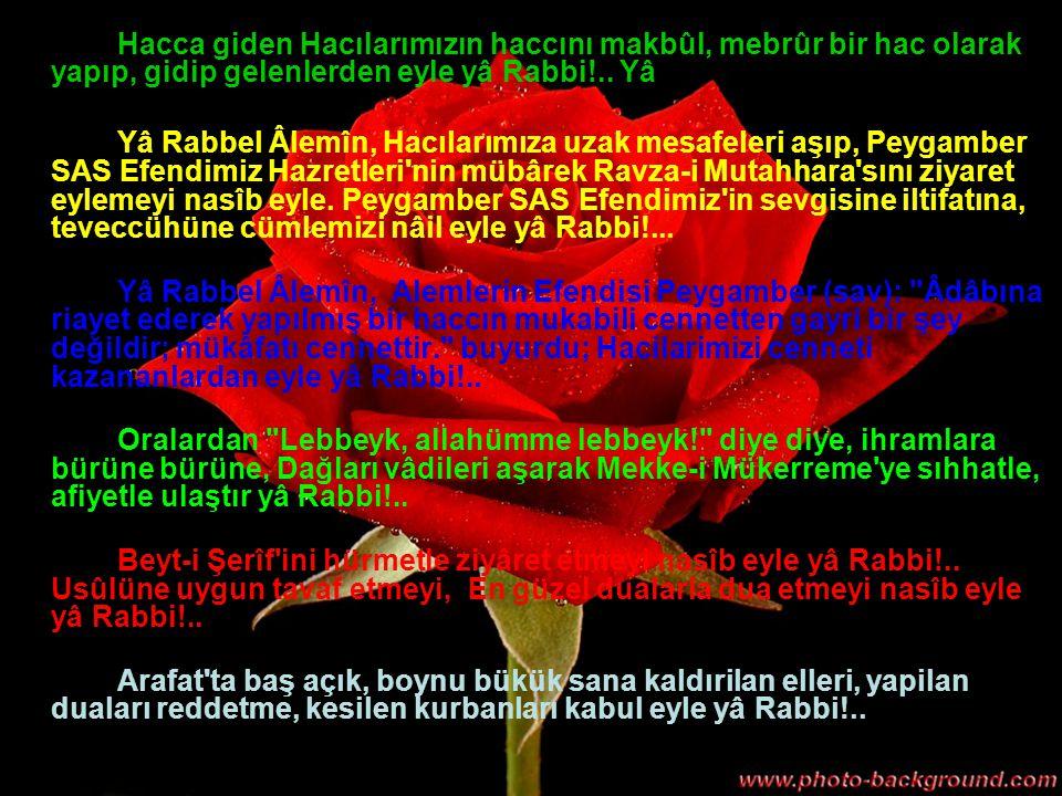 Hacca giden Hacılarımızın haccını makbûl, mebrûr bir hac olarak yapıp, gidip gelenlerden eyle yâ Rabbi!..