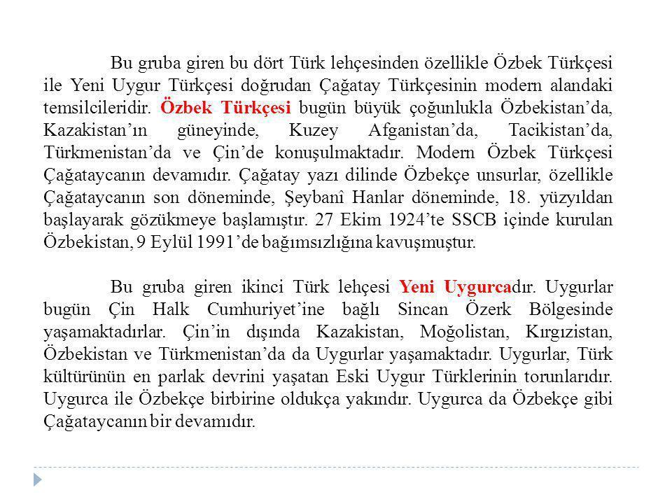 Bu gruba giren bu dört Türk lehçesinden özellikle Özbek Türkçesi ile Yeni Uygur Türkçesi doğrudan Çağatay Türkçesinin modern alandaki temsilcileridir.