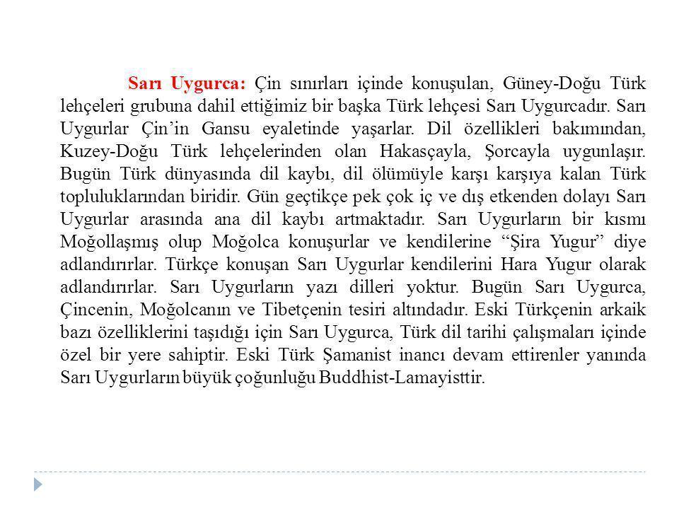 Sarı Uygurca: Çin sınırları içinde konuşulan, Güney-Doğu Türk lehçeleri grubuna dahil ettiğimiz bir başka Türk lehçesi Sarı Uygurcadır. Sarı Uygurlar