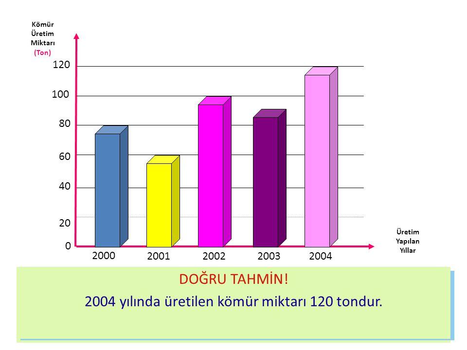 Kömür Üretim Miktarı (Ton) Üretim Yapılan Yıllar 0 20 40 60 80 100 120 2000 2001200220032004 Bu grafiğe göre 2000 yılında 80 ton kömür üretilmiştir.20