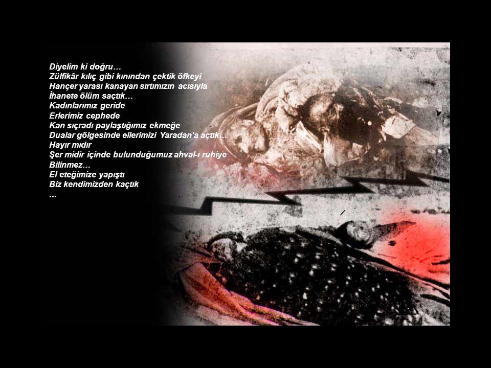 iletisim@aliyasar.com Fotoğraflar; Ermeni çetelerince katledilen Türk Halkının tarihi belgesidir.