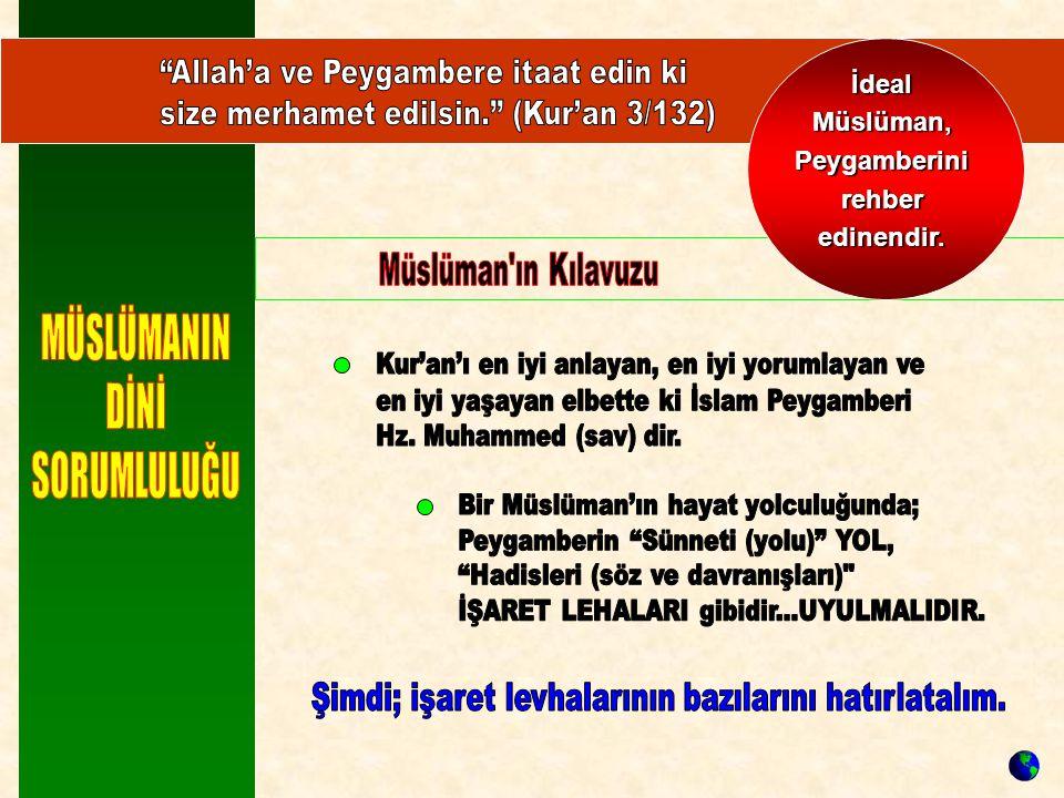 İdeal Müslüman, Peygamberini rehber edinendir.