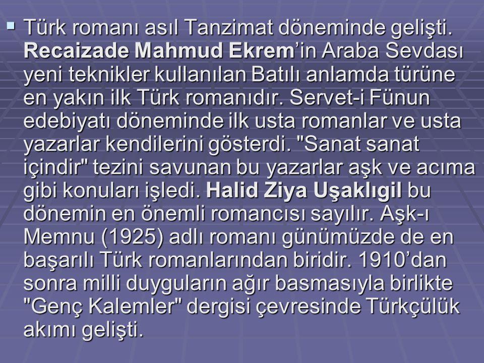  Türk romanı asıl Tanzimat döneminde gelişti. Recaizade Mahmud Ekrem'in Araba Sevdası yeni teknikler kullanılan Batılı anlamda türüne en yakın ilk Tü