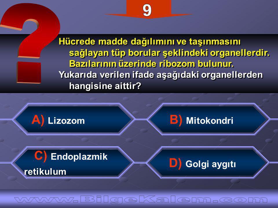 Hücrede madde dağılımını ve taşınmasını sağlayan tüp borular şeklindeki organellerdir.