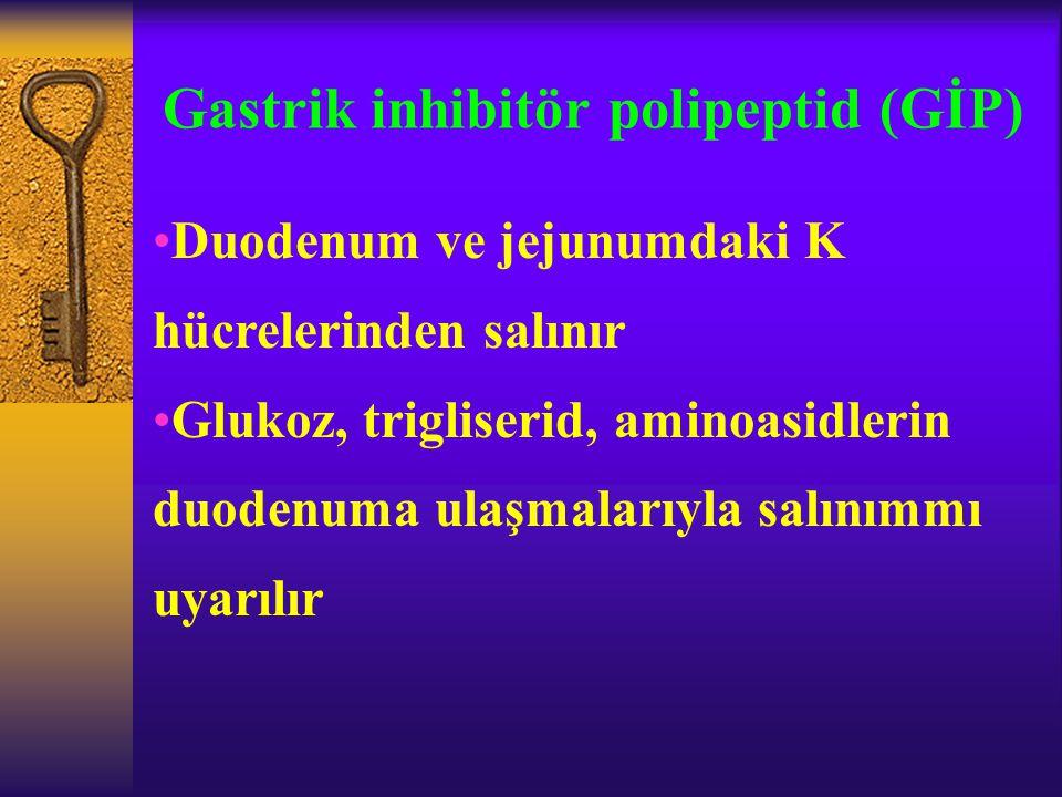 Gastrik inhibitör polipeptid (GİP) Duodenum ve jejunumdaki K hücrelerinden salınır Glukoz, trigliserid, aminoasidlerin duodenuma ulaşmalarıyla salınım