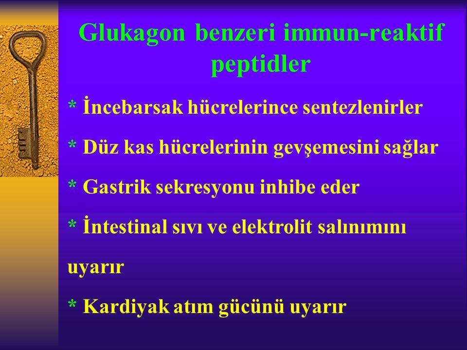 Glukagon benzeri immun-reaktif peptidler * İncebarsak hücrelerince sentezlenirler * Düz kas hücrelerinin gevşemesini sağlar * Gastrik sekresyonu inhib