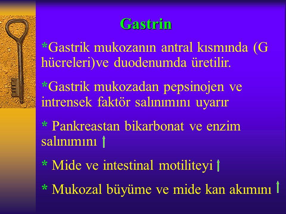 *Gastrik mukozanın antral kısmında (G hücreleri)ve duodenumda üretilir. *Gastrik mukozadan pepsinojen ve intrensek faktör salınımını uyarır * Pankreas