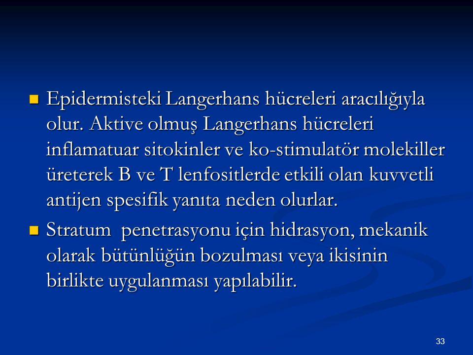 33 Epidermisteki Langerhans hücreleri aracılığıyla olur. Aktive olmuş Langerhans hücreleri inflamatuar sitokinler ve ko-stimulatör molekiller üreterek