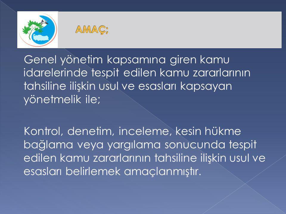 (1) Kamu zararından doğan alacaklar, sorumluların ve/veya ilgililerin talebi üzerine kamu idaresince taksitlendirilebilir.