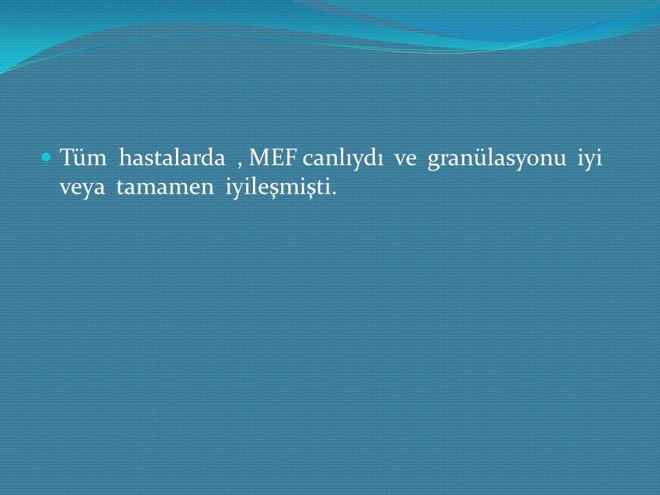 Tüm hastalarda, MEF canlıydı ve granülasyonu iyi veya tamamen iyileşmişti.