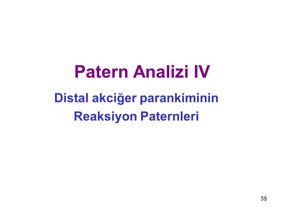 35 Patern Analizi IV Distal akciğer parankiminin Reaksiyon Paternleri