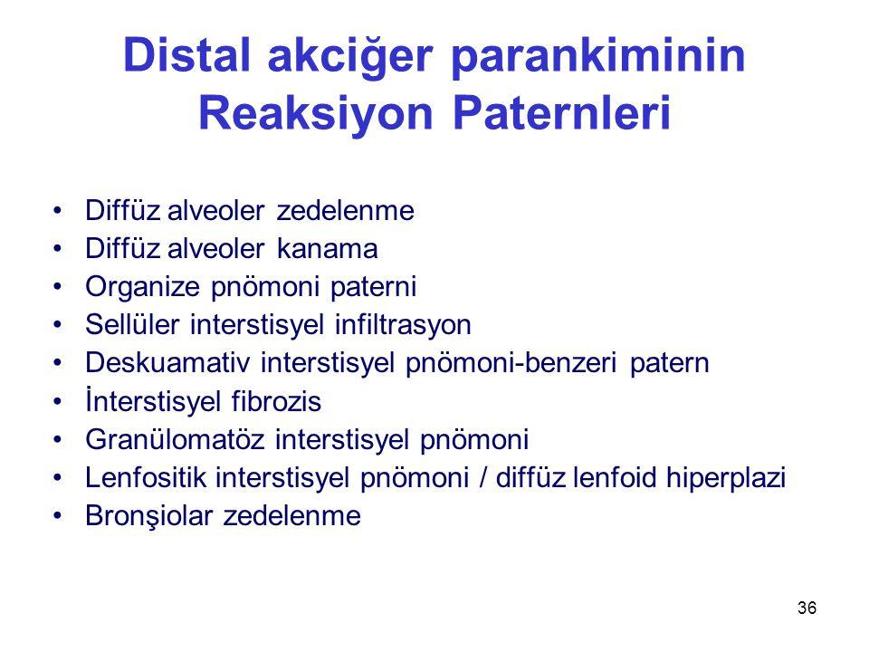 36 Distal akciğer parankiminin Reaksiyon Paternleri Diffüz alveoler zedelenme Diffüz alveoler kanama Organize pnömoni paterni Sellüler interstisyel infiltrasyon Deskuamativ interstisyel pnömoni-benzeri patern İnterstisyel fibrozis Granülomatöz interstisyel pnömoni Lenfositik interstisyel pnömoni / diffüz lenfoid hiperplazi Bronşiolar zedelenme