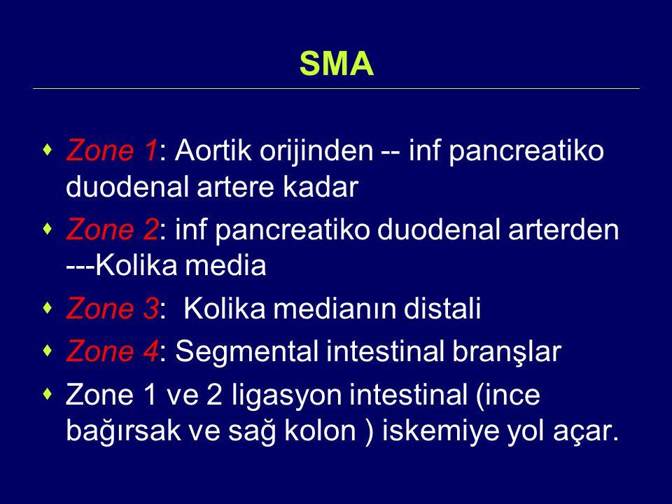 SMA  Zone 1: Aortik orijinden -- inf pancreatiko duodenal artere kadar  Zone 2: inf pancreatiko duodenal arterden ---Kolika media  Zone 3: Kolika m