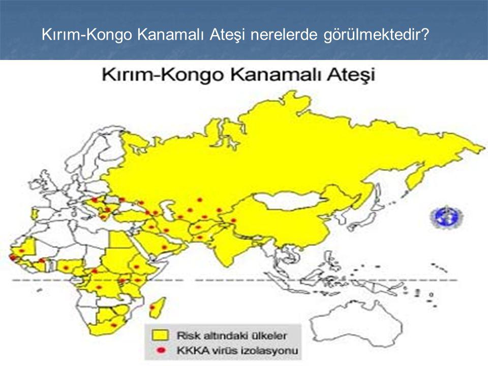 Kırım-Kongo Kanamalı Ateşi nerelerde görülmektedir?