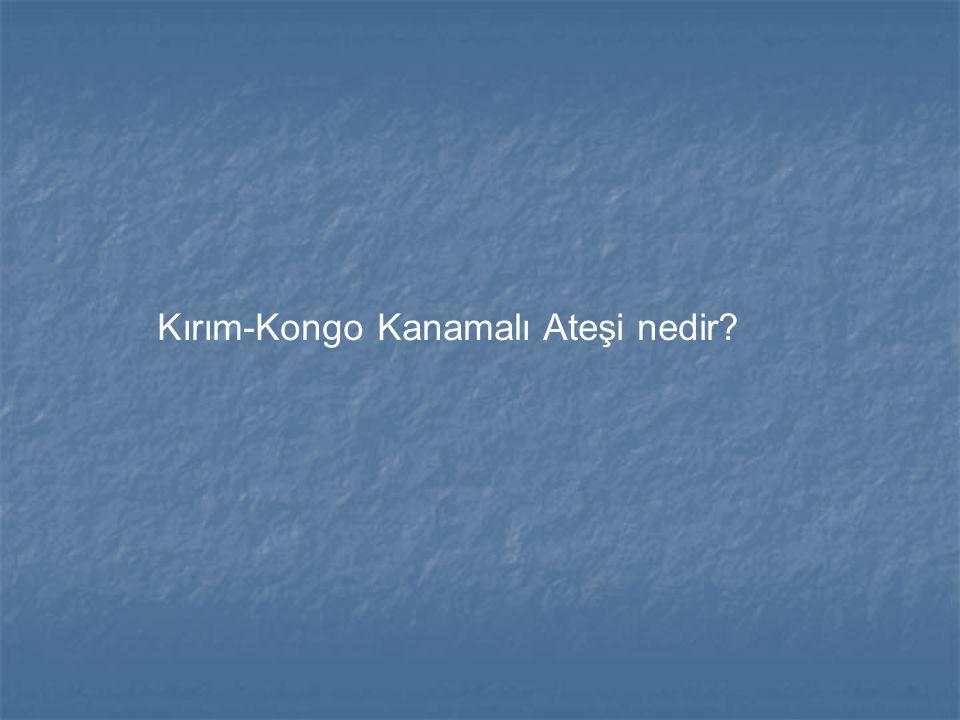 Kırım-Kongo Kanamalı Ateşi nedir?