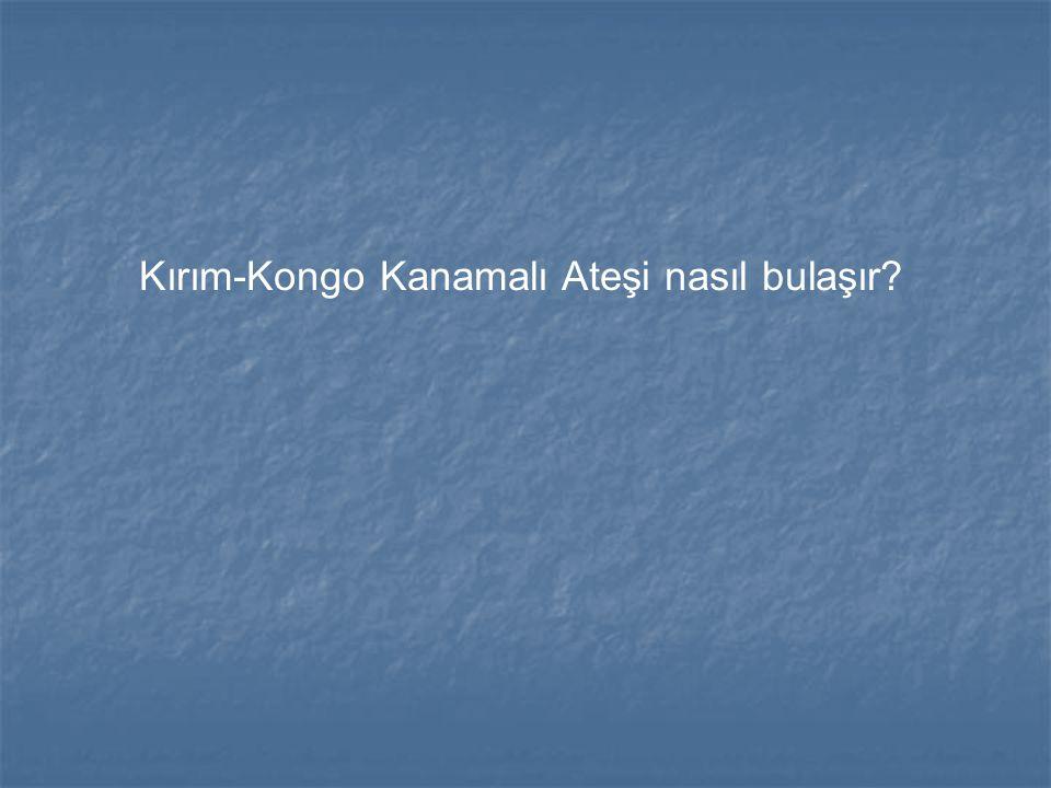 Kırım-Kongo Kanamalı Ateşi nasıl bulaşır?