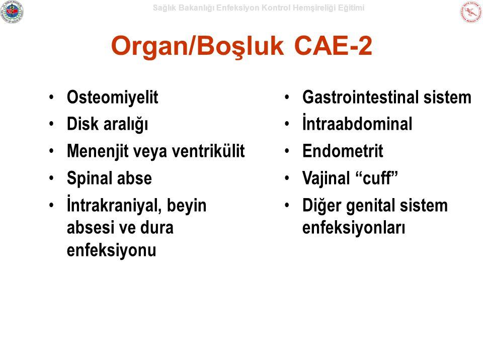 Sağlık Bakanlığı Enfeksiyon Kontrol Hemşireliği Eğitimi Organ/Boşluk CAE-2 Osteomiyelit Disk aralığı Menenjit veya ventrikülit Spinal abse İntrakraniyal, beyin absesi ve dura enfeksiyonu Gastrointestinal sistem İntraabdominal Endometrit Vajinal cuff Diğer genital sistem enfeksiyonları