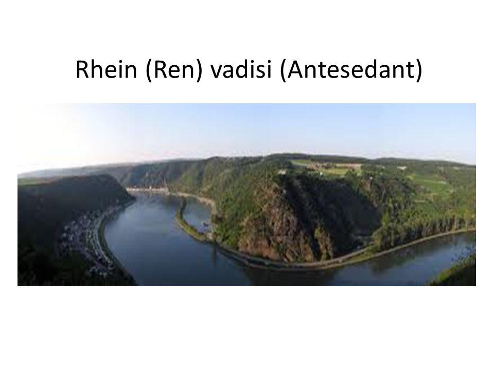 Rhein (Ren) vadisi (Antesedant)
