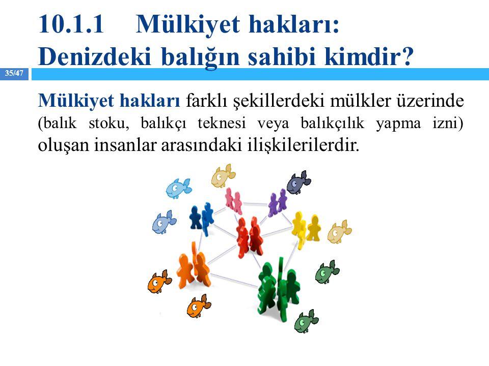 35/47 10.1.1Mülkiyet hakları: Denizdeki balığın sahibi kimdir? Mülkiyet hakları farklı şekillerdeki mülkler üzerinde (balık stoku, balıkçı teknesi vey