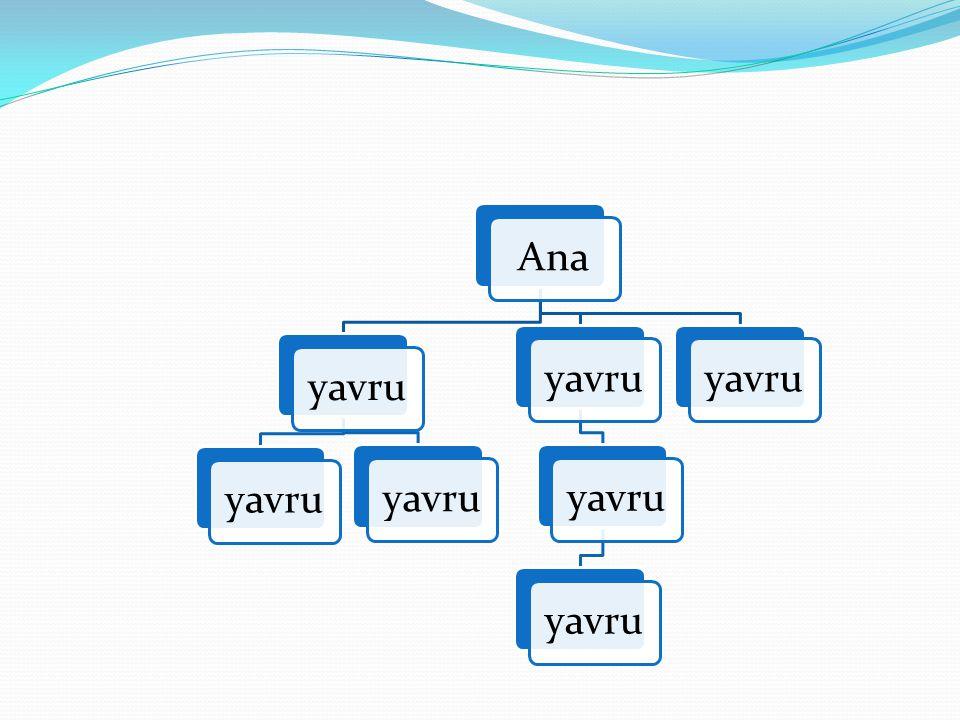 Anayavru