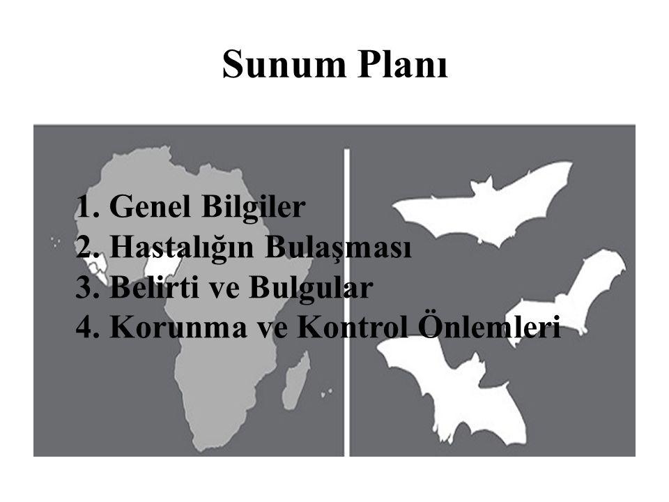 Sunum Planı 1. Genel Bilgiler 2. Hastalığın Bulaşması 3. Belirti ve Bulgular 4. Korunma ve Kontrol Önlemleri