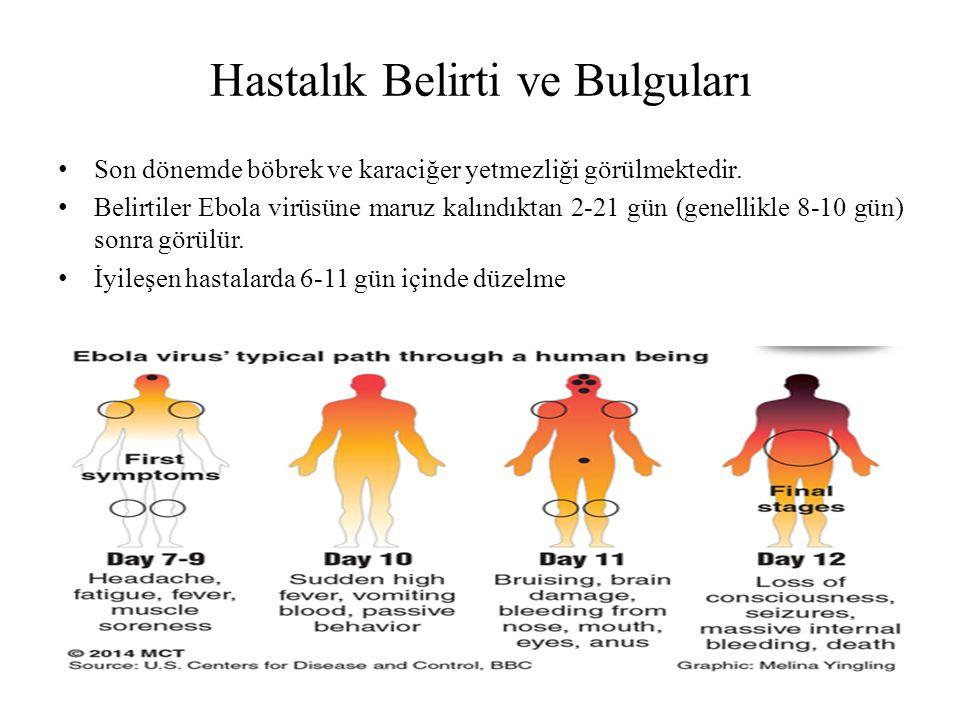 Hastalık Belirti ve Bulguları Son dönemde böbrek ve karaciğer yetmezliği görülmektedir. Belirtiler Ebola virüsüne maruz kalındıktan 2-21 gün (genellik