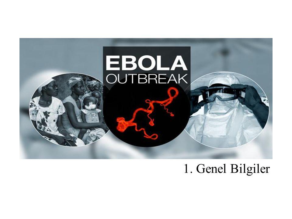 Epidemiyolojik Risk Faktörleri Semptomlar ortaya c ̧ ıkmadan o ̈ nceki 21 gu ̈ n ic ̧ inde; - Dog ̆ rulanmıs ̧ veya s ̧ u ̈ pheli Ebola Viru ̈ s Hastalıg ̆ ı vakasının kan veya dig ̆ er vu ̈ cut sıvıları ile temas veya - Ebola Viru ̈ s Hastalıg ̆ ının aktif olarak yayılımının oldug ̆ u bo ̈ lgede yas ̧ ıyor olmak veya - Bulas ̧ ın aktif oldug ̆ u bo ̈ lgeye seyahat etmek veya - Endemik bo ̈ lgede yarasa, kemirgen veya maymun, s ̧ empanze gibi primatlar ile dog ̆ rudan temas (dokunma, ısırılma, etini yemek vb).